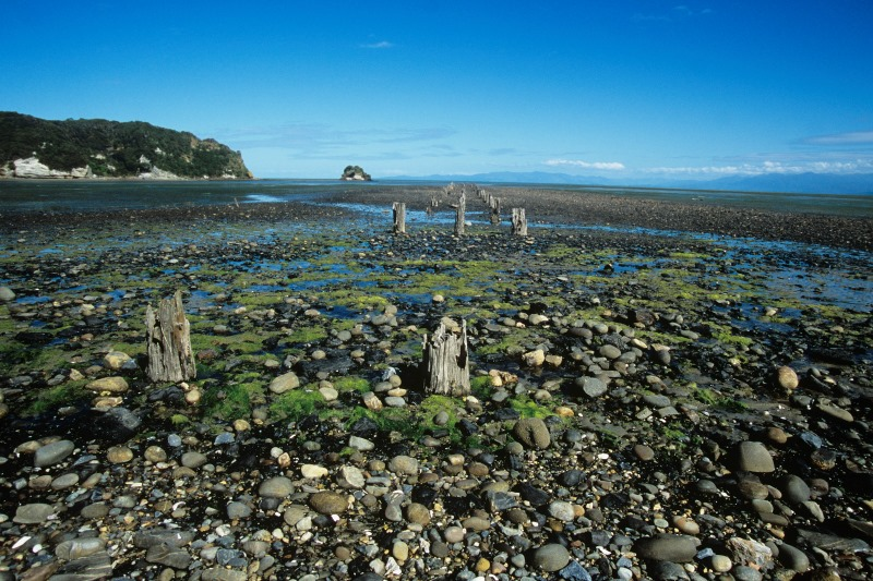 Stone Beach South Island